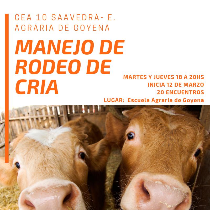 Curso de Manejo de Rodeo de Cría organizada por el CEA N°10  con la Escuela Agraria de Goyena.