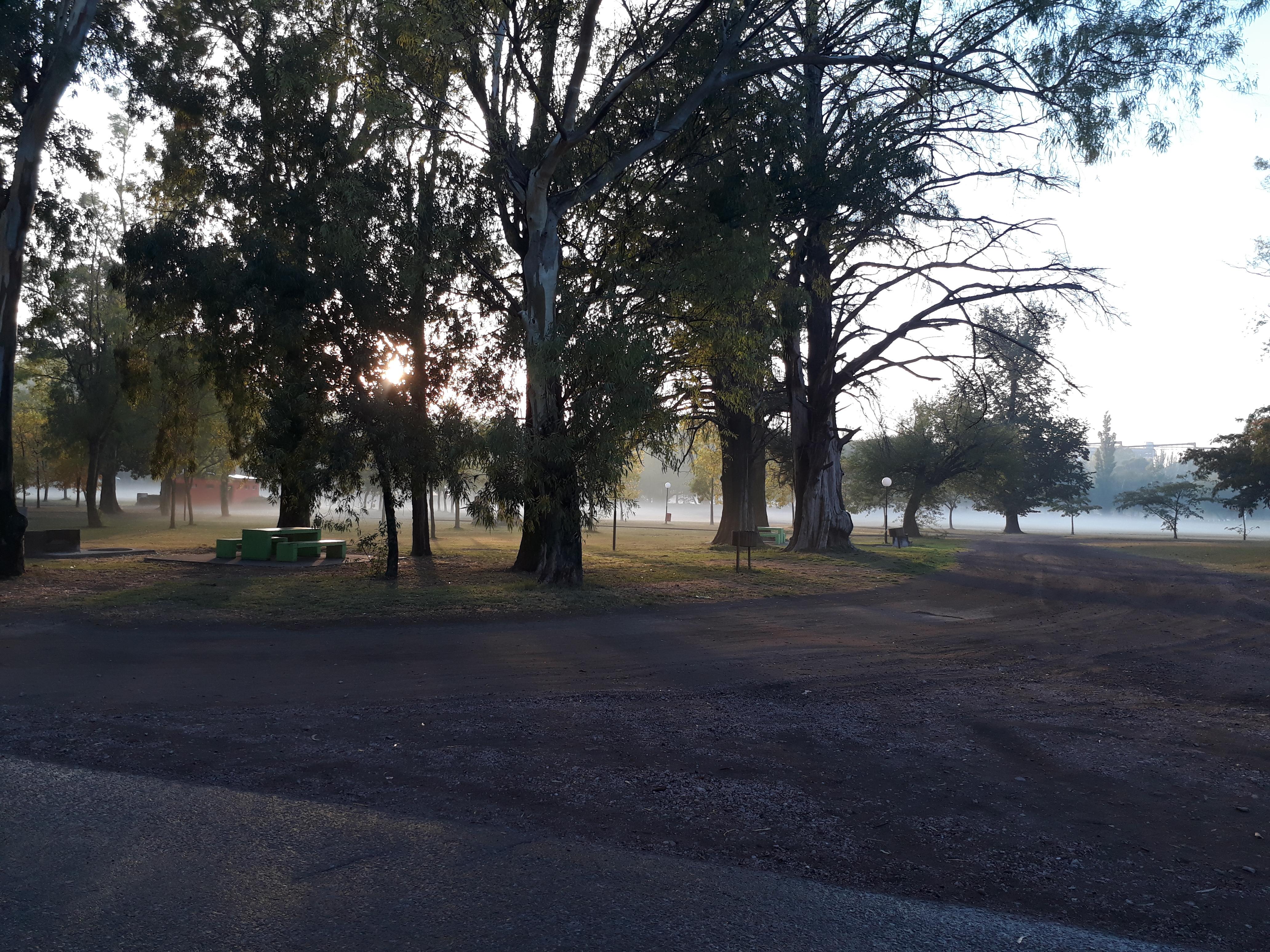 Pigüé: datos del tiempo e imágenes  del Parque Municipal en ésta mañanita otoñal