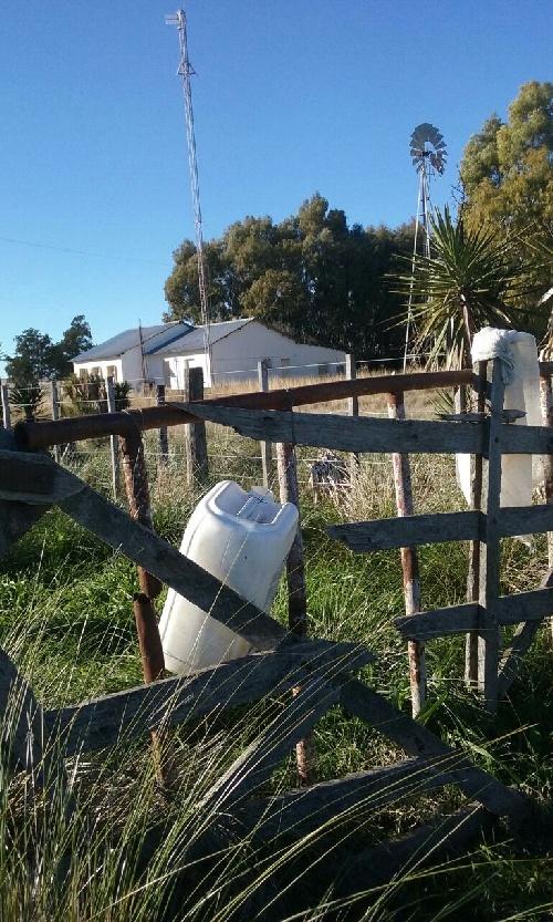 """Carta a la Comunidad de Vecinos ambientalistas piguenses: """"fumigaron tres veces una escuela"""""""