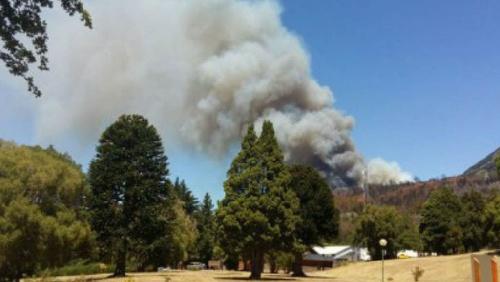 Se incendia el Parque Nacional Los Alerces