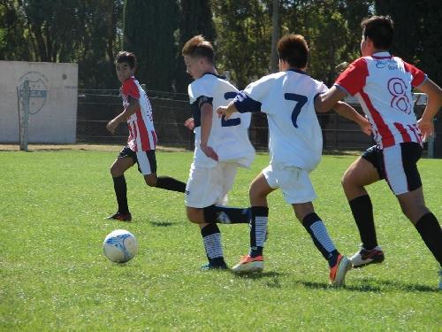 LRF - Inferiores - Deportivo Argentino venció a Unión Pigüé en 3 categorías.