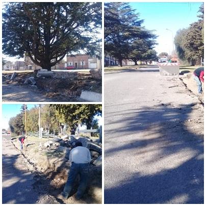 Trabajos y obra municipal en Saavedra
