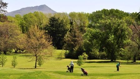 Golf - Con participación pigüense se desarrolla torneo en Sierra de la Ventana.