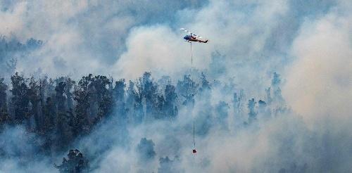 El humo de los terribles incendios en Australia llegó a la Argentina