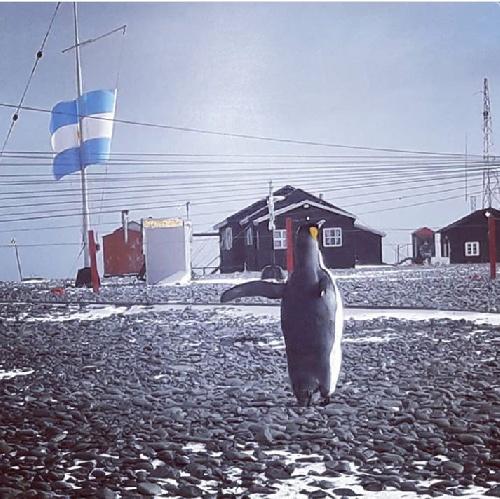 Dia de la Antártida Argentina