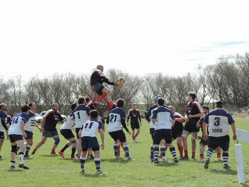 Rugby Torneo Preparación - Club Sarmiento cayó como local ante Los Toros de Puán.