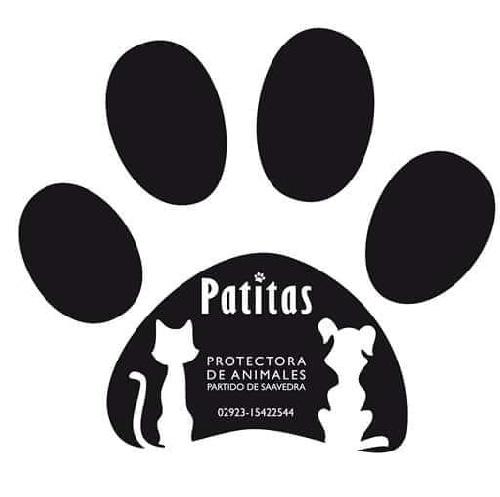 PATITAS Sociedad protectora de animales se declara en quiebra y solicita donaciones