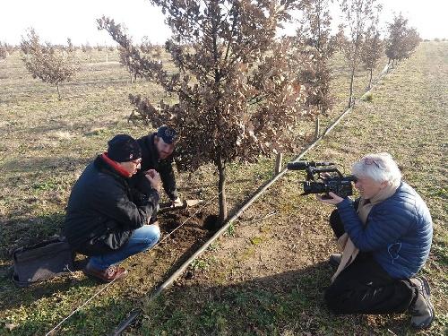 Espartillar y el cultivo de trufas en el Programa de Mario Markic de Canal 13