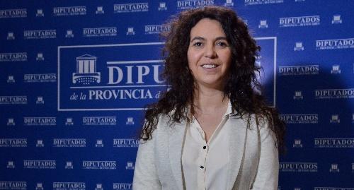 La Diputada Merquel  ( FpV PJ) contradice a Grenada ( Progresistas)  señalando que la iniciativa de limites es suya