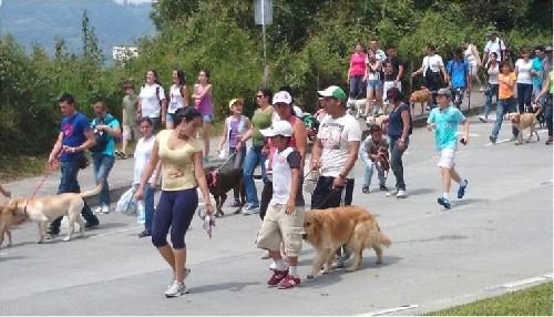 """Pigüé: los Barrios Pueblo Nuevo, Murguía y Arsenal invitan a una """"caminata con mascotas por una tenencia responsable"""""""