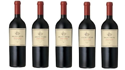 Logro para el vino argentino: un malbec, con puntaje perfecto