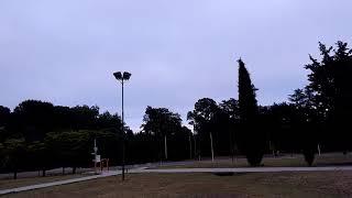 Datos del tiempo en Pigüé (video)