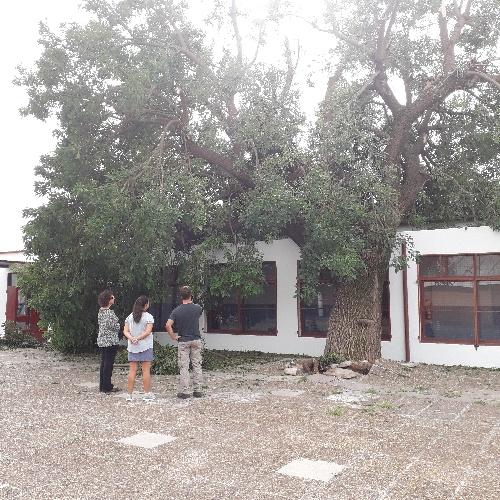 Informe de la consejera escolar Valeria Visotsky de los daños en escuelas de la ciudad