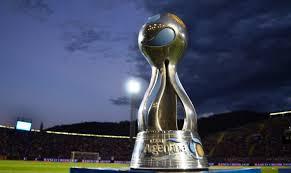Copa Argentina - La AFA anunció el cronograma faltante de 32° de final.