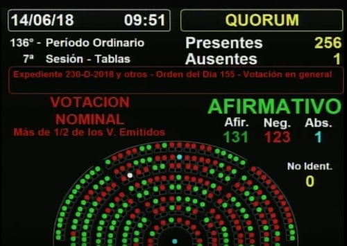 Aborto: Diputados dio media sanción a la despenalización - Ahora continúa en el Senado