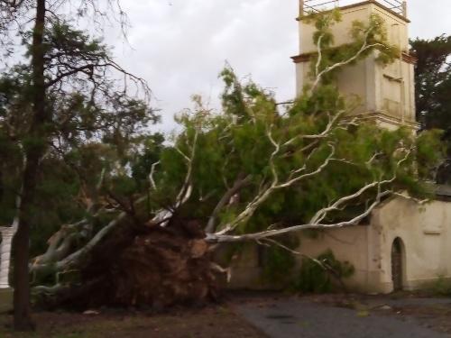 Pigüé, fuerte temporal de lluvia , granizo y vientos de más de 112 km/h