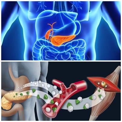 Prueban con éxito el páncreas artificial hecho por científicos argentinos