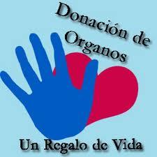 La cantidad de donantes de órganos en la Argentina creció 60 % en un año, informó el INCUCAI